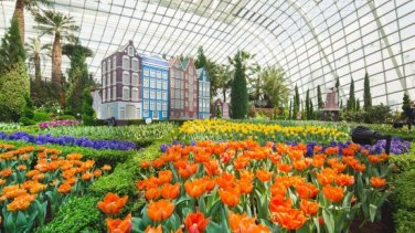 flower dome 2